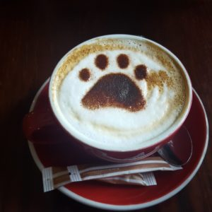 Coffee with paw print in foam- small business use it or lose it